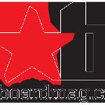 b-star-logo-small-2